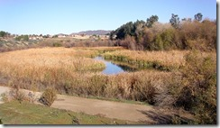 Murrieta Retention Basin-01-w